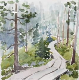 Luonto, ennen muuta Lapin maisemakuvaus, on Anna-Liisa Rikalan akvarellien aihepiiriä.