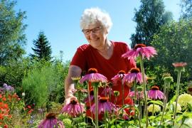 Puutarhan hoitaminen on tuonut Mailis Ojalle paljon iloa ja ajankulua. Kun Oja saa hoidettua yhden kukkapenkin, rientää hän nyppimään seuraavaa. Kuva: Kiti Salonen