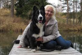 Leila Hätönen bongaa kuvattavaa lenkkeilessään koiriensa Jekun (kuvassa) ja Wedan kanssa. Koiratkin pääsevät usein poseeraamaan. Kuva: Kiti Salonen