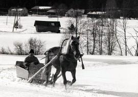 Kirkkomatkall avarsinaisen joulukirkon yheydessä ei yleensä ajettu kilpaa, mutta joulun mentyä oli aika hurjan ajon. Kuva: Sarka-museon kokoelmat