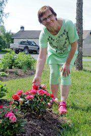 Ritva Kolinkanta esittelee kukkapenkissä punaisena hehkuvia äitienpäiväruusuja. Kuva: Tiina Naula