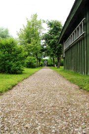 Pitkä puistokäytävä kulkee läpi puutarhan. Kuva: Lari Kiviranta.