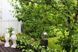 Aurinkoisella paikalla terassilla ja sen vieressä sijaitsevat tomaatti-, yrtti- ja salaattiviljelmät sekä pieni mansikkamaa. Kuva: Emilia Voltti