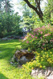 Kukat, puut ja kivipengerrys ihastuttavat. Kuva: Siiri Jumppanen