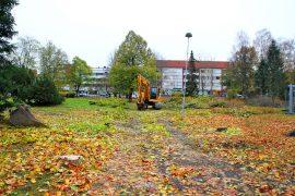 Keskuspuiston uudistamistöiden yhteydessä kaadetaan osa puista. Tilalle on tarkoitus istuttaa aikanaan uusia puita. Kuva: Lari Kiviranta.