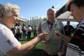 Skoolaamassa viinitilalla Anni Heikkilä ja Lauri ja Leena Toivonen.