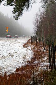 Ysitiellä on riista-aitaa reilun kilometrin osuudella Loimaan Metsämaan välillä. Kuva: Lari Kiviranta