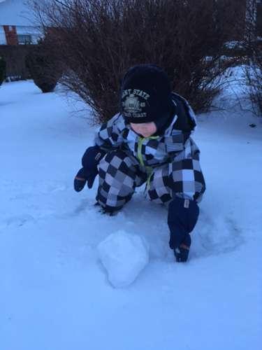 Onni, 4 vuotta, pyörittää Suomi 100 -juhlavuoden ensimmäistä lumipalloa ensimmäisenä nuoskalumipäivänä tammikuun 13. päivä. Kuva: Erja Honkanen-Tuominen.