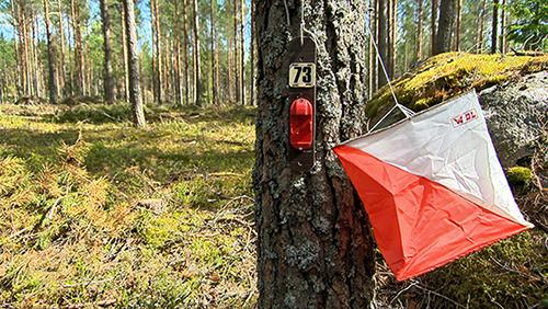 arrastusrastit vetävät ihmisiä nyt liikkeelle. Kyseessä on valtakunnallinen trendi. – Viime vuonna Suomessa tehtiin 470 000 suoritusta. Se tarkoittaa, että Suomi suunnistetaan päästä päähän monena iltana viikossa, kuvailee puheenjohtaja Jyrki Laine Paimion Rastista.